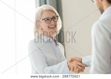 Happy Mature Businesswoman Handshaking Partner Client, Trust And Gratitude Handshake