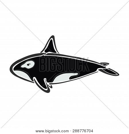 Killer Whale Character Abstract Ink Hand Drawn Vector Logo Cartoon. Color Illustration. Marine Wild