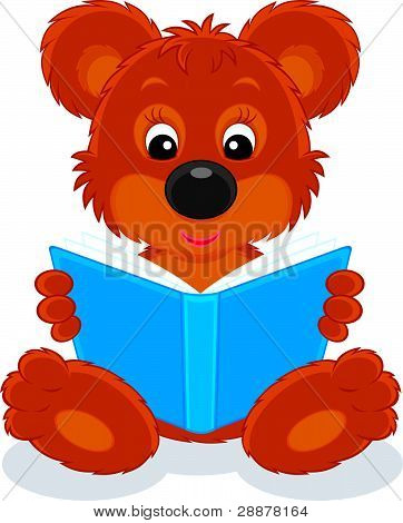 Brown bear cub reading a book