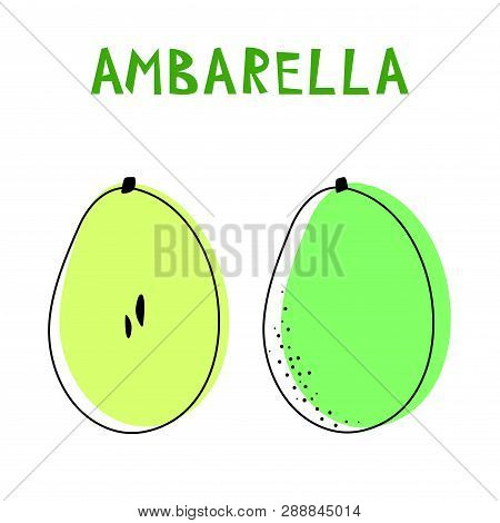 Set Of Two Isolated Ambarellas. Vector Drawing Of Rare Topucal Exotic Fruit - Ambarella. Spondias Du