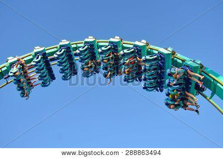 Orlando, Florida . February 26,  2019. People Having Fun Terrific Kraken Rollercoaster At Seaworld T
