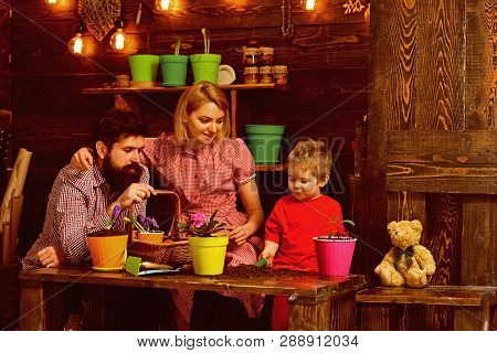Family Concept. Family Planting Flowers At Home. Little Child Help Mother And Father To Care For Pla