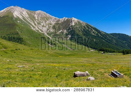 Green alpine meadow and mountains on background under blue sky in Piedmont, Northern Italy.