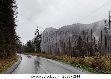 View Of The Winding Mountain Road Through The Pass, Part Of The Mountain Serpentine, In Autumn Cloud
