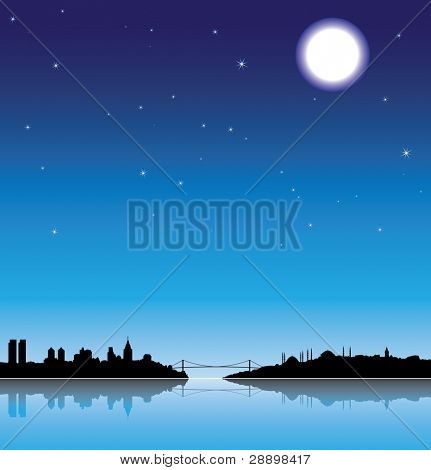 Istanbul silhouette at night