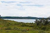 Lake of the Hydroelectric Power Plant of Emboracação in Minas Gerais, Brazil. poster