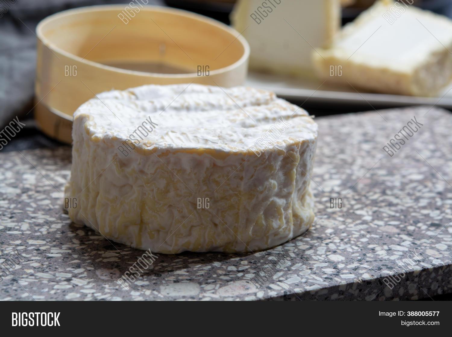 Cheese Collection Image Photo Free Trial Bigstock