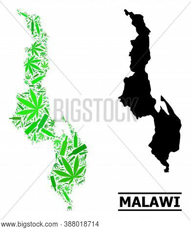 Addiction Mosaic And Usual Map Of Malawi. Vector Map Of Malawi Is Shaped With Scattered Inoculation