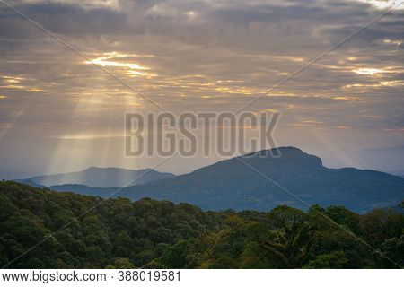 Landscape With Foggy Hills & Trees In Winter At Sunrise. Misty Morning Golden Sunrise, Vintage Film