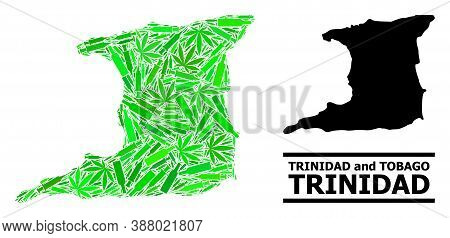 Addiction Mosaic And Usual Map Of Trinidad Island. Vector Map Of Trinidad Island Is Designed Of Rand