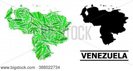 Drugs Mosaic And Solid Map Of Venezuela. Vector Map Of Venezuela Is Organized With Random Syringes,
