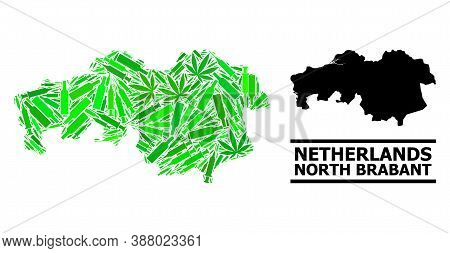 Addiction Mosaic And Usual Map Of North Brabant Province. Vector Map Of North Brabant Province Is Co