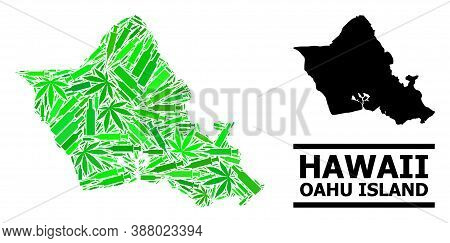 Drugs Mosaic And Usual Map Of Oahu Island. Vector Map Of Oahu Island Is Done Of Randomized Syringes,