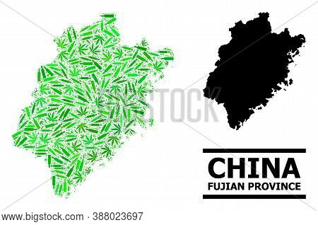 Drugs Mosaic And Solid Map Of Fujian Province. Vector Map Of Fujian Province Is Formed Of Random Vac