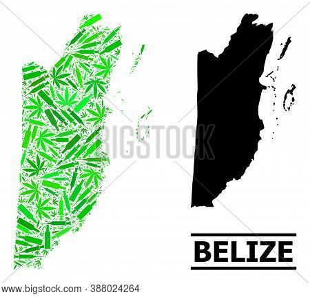 Addiction Mosaic And Usual Map Of Belize. Vector Map Of Belize Is Formed With Randomized Vaccine Dos
