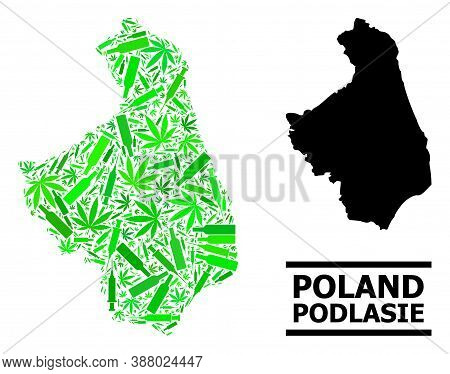 Drugs Mosaic And Solid Map Of Podlasie Province. Vector Map Of Podlasie Province Is Formed With Rand