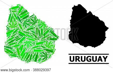 Addiction Mosaic And Usual Map Of Uruguay. Vector Map Of Uruguay Is Made Of Randomized Vaccine Symbo