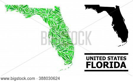 Drugs Mosaic And Solid Map Of Florida State. Vector Map Of Florida State Is Constructed From Randomi