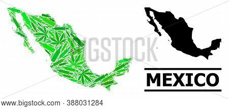 Drugs Mosaic And Solid Map Of Mexico. Vector Map Of Mexico Is Designed From Random Vaccine Symbols,