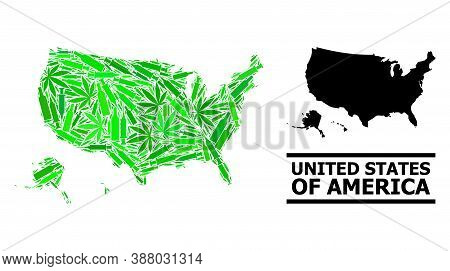 Drugs Mosaic And Usual Map Of Usa Territories. Vector Map Of Usa Territories Is Created From Randomi
