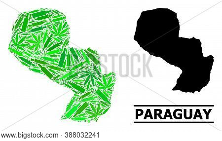 Drugs Mosaic And Solid Map Of Paraguay. Vector Map Of Paraguay Is Shaped With Random Injection Needl