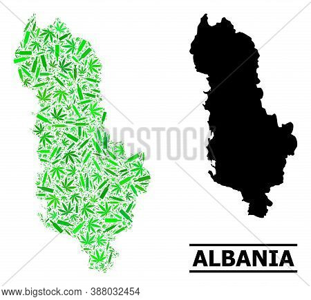 Addiction Mosaic And Usual Map Of Albania. Vector Map Of Albania Is Organized With Scattered Syringe