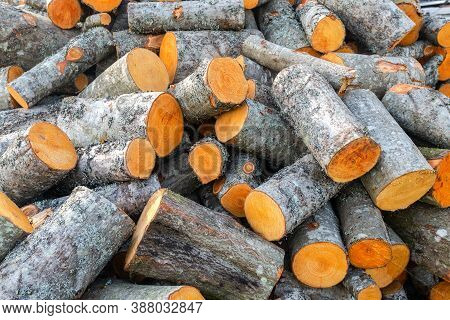 Chopped And Stacked Up Dry Firewood As Background. Stock Pile Of Timber, Chopped Down Trees