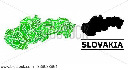 Addiction Mosaic And Usual Map Of Slovakia. Vector Map Of Slovakia Is Designed Of Random Vaccine Dos