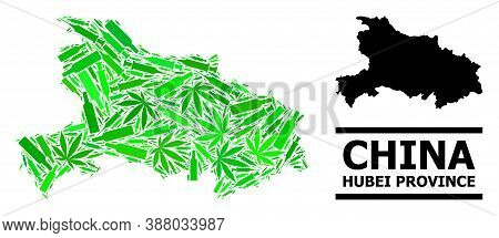 Drugs Mosaic And Usual Map Of Hubei Province. Vector Map Of Hubei Province Is Done From Random Inocu