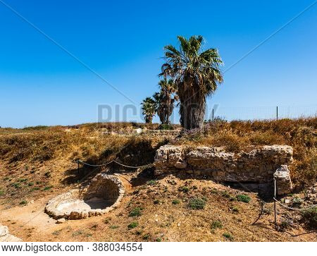Archaeological Excavation In Apollonia National Park, Israel