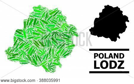 Drugs Mosaic And Usual Map Of Lodz Province. Vector Map Of Lodz Province Is Made With Randomized Ino