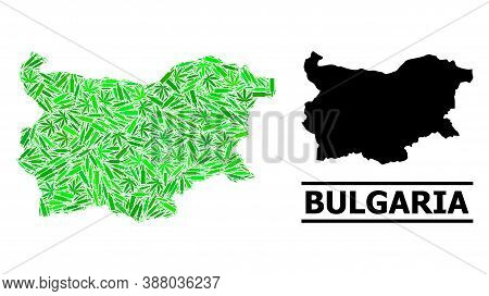 Drugs Mosaic And Solid Map Of Bulgaria. Vector Map Of Bulgaria Is Designed Of Scattered Inoculation
