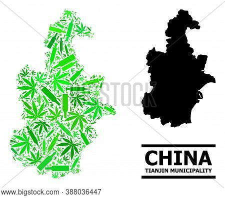 Drugs Mosaic And Usual Map Of Tianjin Municipality. Vector Map Of Tianjin Municipality Is Designed F