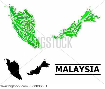 Drugs Mosaic And Usual Map Of Malaysia. Vector Map Of Malaysia Is Formed With Scattered Inoculation