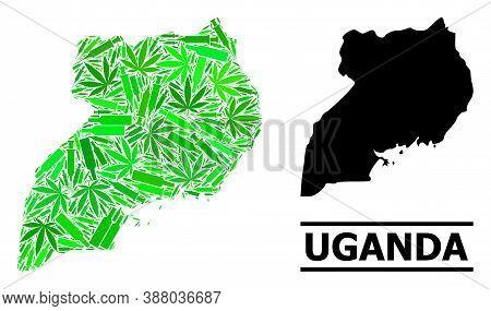 Addiction Mosaic And Usual Map Of Uganda. Vector Map Of Uganda Is Created With Randomized Inoculatio