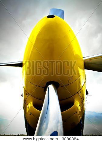 P51D Nose
