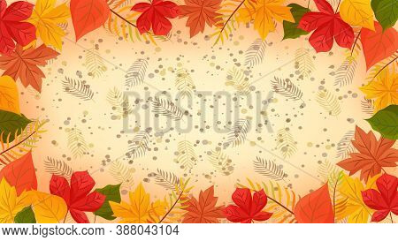 Autumn Colorful Background, Fall Backdrop. Fall Season Sale Banner Background. Colorful Maple And Oa