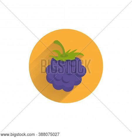 Blackberry Colorful Flat Icon With Long Shadow
