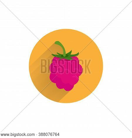 Red Raspberries Colorful Flat Icon With Long Shadow. Raspberries Fruit Flat Icon