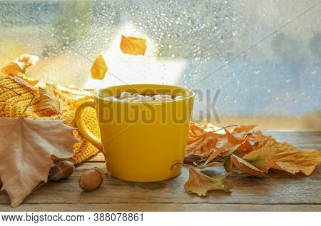 Cup Of Hot Drink With Marshmallows And Autumn Leaves Near Window On Rainy Day. Cozy Atmosphere