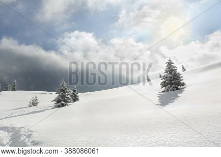 Winter Landscape Of Mountains With Of Fir Tree On Glade In Snow With Path Under Forthcoming Snow Win
