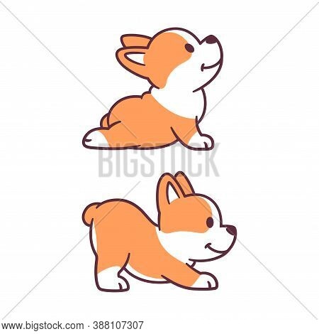 Cute Cartoon Dog Doing Yoga. Adorable Little Corgi Puppy In Upward Facing Dog And Downward Facing Do