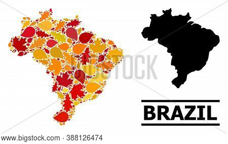 Mosaic Autumn Leaves And Solid Map Of Brazil. Vector Map Of Brazil Is Shaped From Randomized Autumn