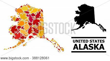 Mosaic Autumn Leaves And Solid Map Of Alaska State. Vector Map Of Alaska State Is Created Of Random