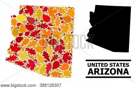 Mosaic Autumn Leaves And Solid Map Of Arizona State. Vector Map Of Arizona State Is Created From Sca