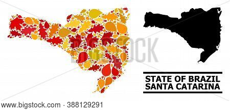 Mosaic Autumn Leaves And Usual Map Of Santa Catarina State. Vector Map Of Santa Catarina State Is Do
