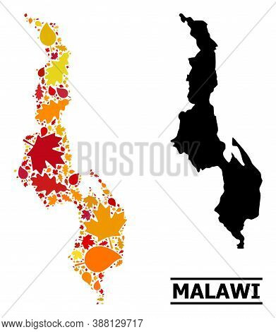 Mosaic Autumn Leaves And Usual Map Of Malawi. Vector Map Of Malawi Is Done From Scattered Autumn Map