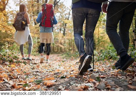 Couples hiking together in the woods; Spring or autumn hiking in nature; camping, travel, tourism,lifestyle,  hike and people concept. Quality active family time together.