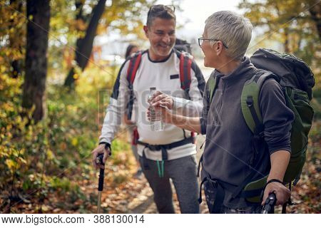 Senior couple hiking in the woods; Active retirment concept