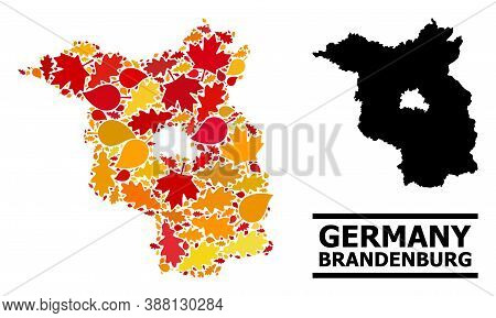 Mosaic Autumn Leaves And Solid Map Of Brandenburg State. Vector Map Of Brandenburg State Is Shaped O